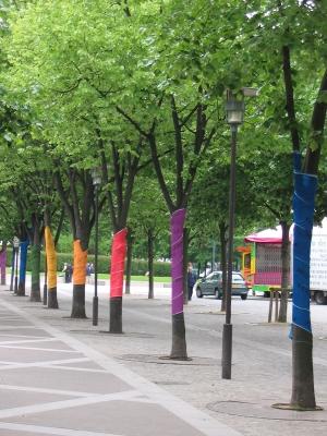 arbres en couleur